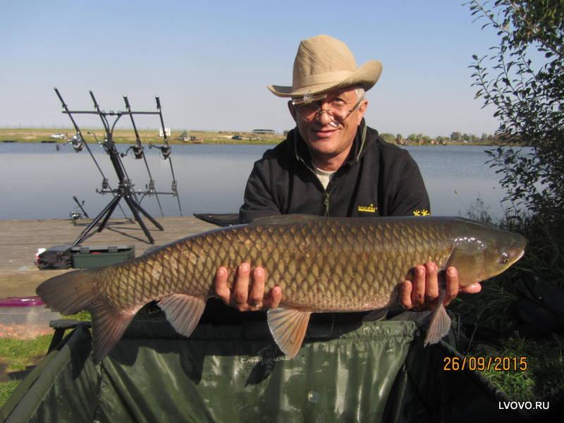 базы для рыбалки на пруду
